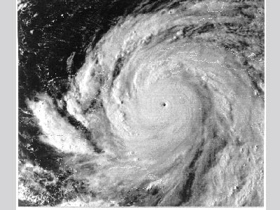 Satellite image of Hurricane Gilbert.