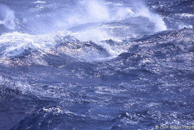 Strong winds generate sea spray over the ocean.
