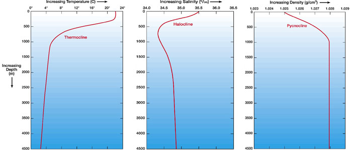 salinity and density relationship with temperature