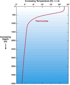 A simple temperature-depth ocean water profile (what you might expect to find in low to middle latitudes).